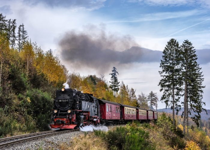 Urlaub im Harz: Kulinarische Highlights entdecken